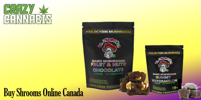buy shrooms online Canada
